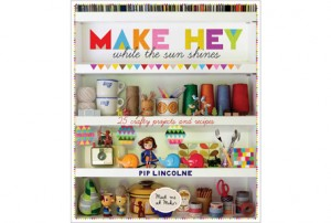 DAY 2 GIVEAWAY: Make Hey! While the Sun Shines