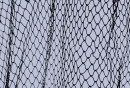 http://www.dreamstime.com/royalty-free-stock-photos-fish-net-image13262788