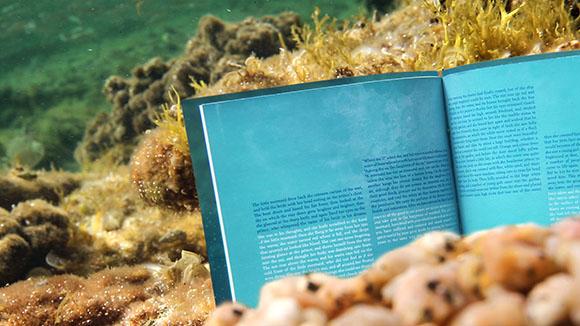 mermaid-under-water