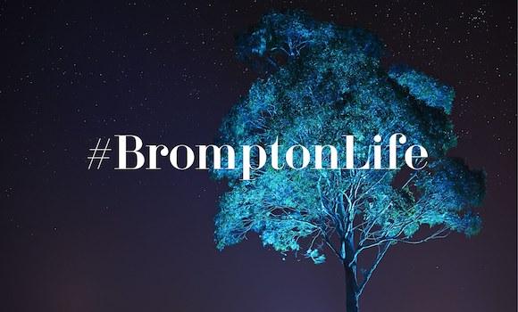 Clear_Brompton_18