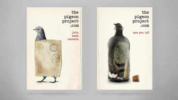 Pigeon-Project