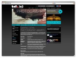 SOYA-WEB-EXAMPLES02