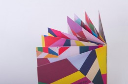 VCAA2012_Pic15_colouredPages