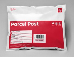 Satchel_Medium_Parcel3