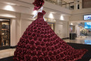 The-Red-Rose-Dress-1---Jason-Corroto
